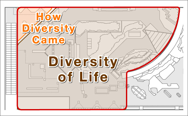 Theme2:Life its Diversity and